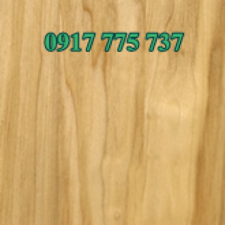 Gỗ Yellow poplar 4/4""